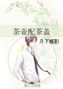 茶壶配茶盖
